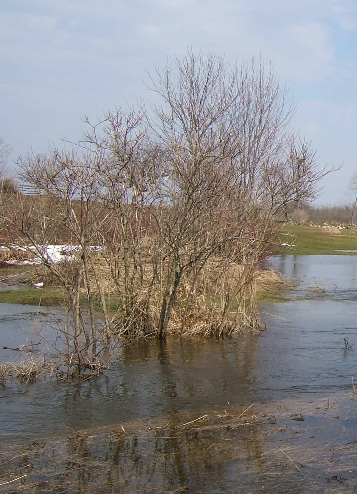 Flooding on private property